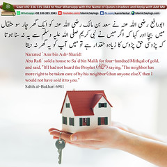 The-neighbor-has-more-right-to-be-taken-care-of-by-his-neighbor (aamirnehal) Tags: quran hadees hadith seerat prophet jesus moses book aamir nehal love peace quotes allah muhammad islam zakat hajj flower gift sin virtue punish punishment teaching brotherhood parents respect equality knowledge verse day judgement muslim majah dawud iman deen about son daughter brother sister hadithabout quranabout islamabout riba toheed namaz roza islamic sayings dua supplications invoke tooba forgive forgiveness mother father pray prayer tableegh jihad recite scholar bukhari tirmadhi
