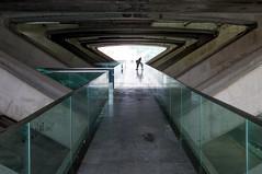 _DSC3274-2 (durr-architect) Tags: oriente station lisbon portugal santiago calatrava rough concrete steel structure space glass floor train metro arches beams modern architecture expo platforms bridge