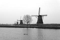 Kinderdijk (YY) Tags: kinderdijk netherlands windmill southholland canal