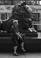 """be on guard, stitt"" (hugo poon - one day in my life) Tags: xt20 35mm hongkong central hsbcmainbuilding hsbc stitt hsbcslion sculpture heritage desvoeuxroad guard waiting solitude aged lion"