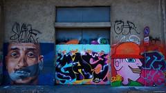 IMGP5411 Street Art (Claudio e Lucia Images around the world) Tags: murales graffiti streetart milano vialemonza ferrovia via pontano milanese pentax pentaxk3ii sigma sigma1020 pittura face faccia murale joker green smile muro