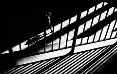 Lines (TS446Photo) Tags: nikon black white shadow bright street man person musum mono monochrome