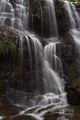 When nature opens its canvas (soumitra911) Tags: waterfall silk long exposure green monsoon sky rain sahyadri western ghats water cloudy pune india maharashtra madhe ghat torna fort soumitra inamdar soumitra911