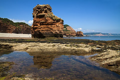 Rock Pools and Sea Stacks (Christian Hacker) Tags: ladrambay seastacks jurassiccoast unesco worldheritagesite rockpools sunny summer sunshine hot geology cliffs triassic red rocks bluesky pebblebeach coast coastal dayout coastline landscape canon eos50d tamron 1750mm devon uk clearwater maritime ocean sealife atlantic seaweed kelp rocklayers rockstriata