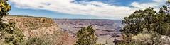 Grand Canyon National Park (spierson82) Tags: southrim summer grandcanyon canyon nationalpark grandcanyonnationalpark arizona vacation landscape panorama grandcanyonvillage unitedstates us
