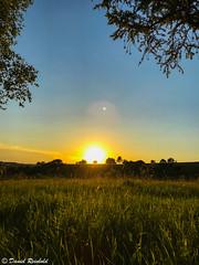 Sunset (reinbold_daniel) Tags: sun flickr himmel landscape landschaft sonne nature sonnenuntergang online sky green grün instagram natur sunset