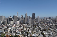 View from Coit Tower (fronobulax) Tags: transamericapyramid sanfrancisco financialdistrict