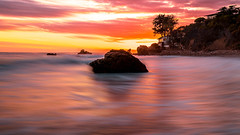 Malibu long exposure (photoserge.com) Tags: malibu california beach water long exposure rock composition colors magenta seascape ocean palm tree