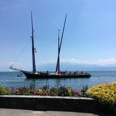 Parade des voiles latines à Morges (Iris_14) Tags: morges vaud romandie suisse lacléman voileslatines navigation barque sailing genevalake switzerland laneptune