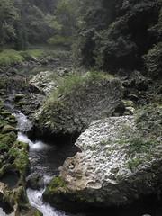 Guizhou China 2017  开阳3 (黔中秘境) Tags: guizhou china cave asia mountains 中国 贵州 亚洲 山 大自然 cavem caves caving cccp speleo 中国洞穴 贵州洞穴 贵阳 洞 山洞 洞穴