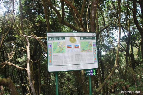 Національний парк Гарахонай, Гомера, Канарські острови  InterNetri  0691