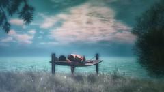 Tʜᴇʀᴀᴘʏ (Şavannaн (sweetsenses@SL)) Tags: omba couple secondlife sweet romance love relax sky