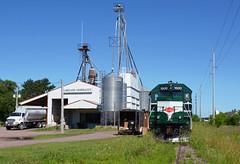 WN 1500- Grassy Green (Khang Lu) Tags: grain silo pgr progressive rail wisconsin northern 1500 gp151 emd railroad train grass branch overgrown wi chetek