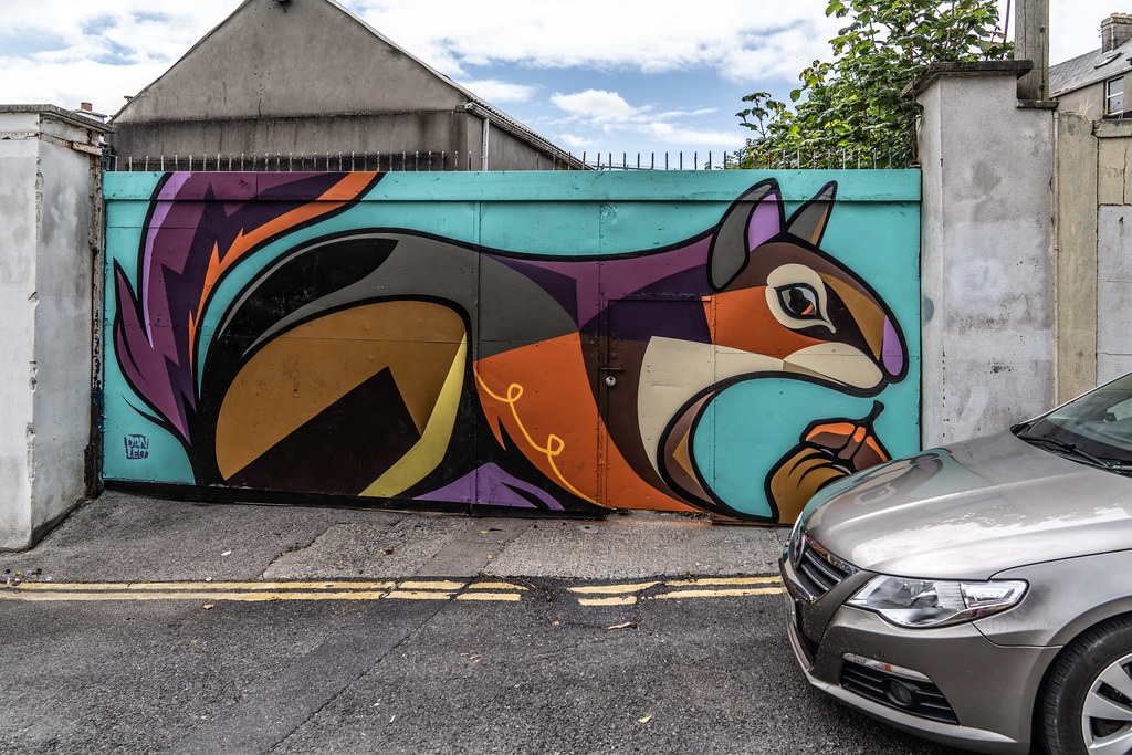 EXAMPLES OF STREET ART [URBAN CULTURE IN WATERFORD CITY]-142277