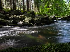 Labe river