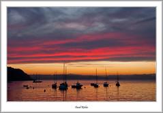 Brixham Pink After-Glow (flatfoot471) Tags: 18125sigma 2016 boats brixham devon dusk england holiday july marina normal summer sunset twilight unitedkingdom gbr