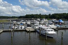 Suicide Bridge River Boat Trip (133) (Vernon Brad Bell) Tags: maryland boattrip suicidebridge choptankriver choptank river cambridge riverboat cabincreek