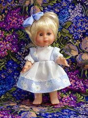 Duck House (M.P.N.texan) Tags: doll vinyl limitededition duckhouse collectible collectable