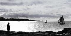 18_Apr_Scan_03 (Dana Prost) Tags: bw britishcolumbiacanada kodachrome sailboat scan slidescans straitofjuandefuca victoriabritishcolumbia