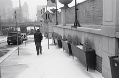"The Ice Storm Series: Lone pedestrian (Xsbmrnr (Please read profile before ""following"") Tags: acros100 acros blackandwhite bandw documentary 35mm 35mmfilm film filmphotography hamilton hamiltonontario olympusom1 om1 street streetphotography urban urbanphotography winter zuiko zuiko35mm"