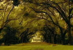 Perplexing Plantation (sherry kuhlkin) Tags: charleston sc southcarolina charlestowne plantation mansion lowcountry slaves civilwar old historic liveoak park ahsleyriver settlement early america southern charm charlestownelanding legarewaring house colonial marsh english boat