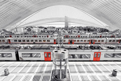 Lüttich Liège-Guillemins (photissimo.de) Tags: lüttich bahnhof liègeguillemins liège gare station architecture architektur santiago calatrava fisheye colorkey ck fenster