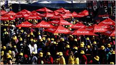 Umbrella-ella-ella-ellas...and some yellow hats, too. (Finepixtrix) Tags: crowd yellowhats 702 walkthetalk2018 johannesburg markspark sonycybershot rx10 mtn bridgecamera