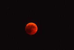 BLUTMOND . BLOOD MOON : TOTALE MONDFINSTERNIS . TOTAL LUNAR ECLIPSE (LitterART) Tags: penumbraleclipse blutmond bloodmoon 400mm nikond800 nikon d800 mond moon mondfinsternis eclipse lunareclipse lune luna