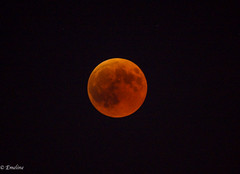 Red Moon eclipse 27/07/2018 (Emeline P) Tags: sonyalpha77 tamron150600mm sigmaobjectifmacro18250mmf3563dcoshsm sigmaexmacroobjectif105mmf28 éclipselunaire mooneclipse astronomy astres planet sky night nature space stars espace étoile ciel astronomie redmoon lunedesang