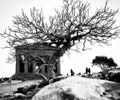 "Tempio della concordia ""Agrigento"" (bonannellacarmelo) Tags: travel italy sicily blackandwhite photo agrigento"