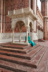 In the mosque (marko.erman) Tags: mughal mosque architecture history religion india minarets towers standstone red marble white courtyard terrace panoramic panorama perspective ciel jamamasjid shahjahan newdelhi