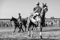 Beach Horse Races (AS Marcos) Tags: caballos people street bw monochrome spain sanlucar races