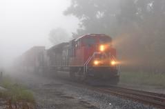 CN 8803 (GLC 392) Tags: cn 8803 5666 emd sd70m2 sd75i railroad railway train fog foggy light head tree durand mi michigan holly sub division subdivision
