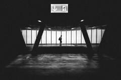 zurich 18 (matthias hämmerly) Tags: candid street streetphotography shadow contrast grain ricoh gr black white bw monochrom monochrome city town urban blackandwhite strasse people monochromphotography dark zürich zuerich light kid matrix silhouette station main bahnhof linien wand einfarbig personen evening sky everybody streetphotoclub stadelhofen pendler train moving commuter everybodystreet streetphotographyclub peoplephotography trainphotography commutephotography commuters commute travel oerlikon