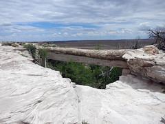 pfpd055bridge (invisiblecompany) Tags: 2018 travel usa nationalpark arizona petrifiedforest