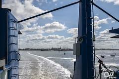 terschelling-augustus2018-10 (voorhammr) Tags: boten brnadaris natuur noordzee rederijdoeksen terschelling waddenzee westterschelling wolken wolkendek zeehonden zonsopkomst harlingen friesland nederland nl