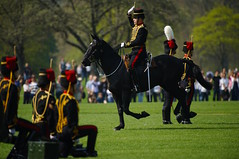The Queen's 2018 Birthday gun salute - 48 (D.Ski) Tags: 2018 queens queen birthday gun salute royal park horse horses april westminster london nikon 2470mm 200500mm thekingstrooprha thekingstroop parade thequeen hydepark d700 nikond700