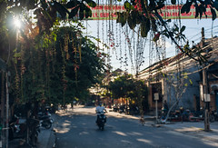 Bokeh Rider (meezoid) Tags: motorbikes motorcycles motorcyclist people hoian urban vietnam travel asia vines plants bokeh streetphotography sun road cities creepers dangle shadow
