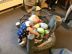 "Dani Plays with Eggs at Brookfield Zoo • <a style=""font-size:0.8em;"" href=""http://www.flickr.com/photos/109120354@N07/41740578840/"" target=""_blank"">View on Flickr</a>"