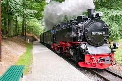 Rasender Roland - Haltepunkt Jagdschloss Granitz (Corno3) Tags: gx80 schmalspurbahn dampflok rügen ostsee sommer granitz binz mecklenburgvorpommern deutschland de