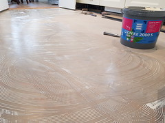 Polyflor camaro tile with grey grout strip - kitchen, hallway, dining area, toilet