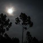 Moon & Mars at Opposition thumbnail