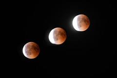 Éclipse totale de la Lune du 27 juillet 2018 (aurelien.ebel) Tags: alsace basrhin france lawantzenau lune nuit éclipse