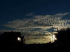 Before the fall (Andy WXx2009) Tags: landscape skyline sky clouds artistic sunlight sunset silouhettes house valeofglamorgan light wales europe beauty abstract trees outdoors dusk