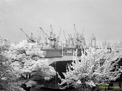 Hamburg Hafen / Harbour (peterkaroblis) Tags: hamburg hafen harbour landungsbrücken kran crane werft shipyard