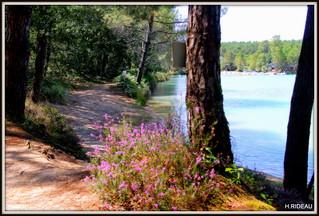 Lac de Beauvallon   17 MONTGUYON