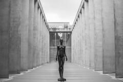 Statue (Jontsu) Tags: museum egyptian statue munich munchen germany deutschland europe nikon d7200 blackandwhite bw 35mm