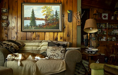 Cottage Life (Bill Anderson :-)) Tags: cottagelife huronsands lakehuron ontario canada canadiana interior warm inviting peaceful dog resting couch pillows lamp cottage lakecottage painting marjorie clifford
