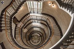 Twisted (alundisleyimages@gmail.com) Tags: spiral staircase steps liverpool interior architecture naturallight handrails stairs floors levels lights lamps windows ornamentalglass height vertigo merseyside northwestengland