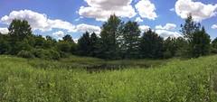 Hidden Pond (sumilex77) Tags: westmoreland greensburg pennsylvania park pond nature